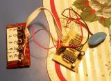Електронската брава во изведба на Јован Шикалоски од Охрид