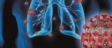 Нивото на CRP во крвта ја предвидува сериозноста на COVID-19